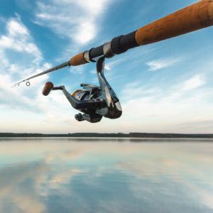 Fishing rod over ocean
